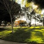 garfield-park6