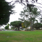 garfield-park7