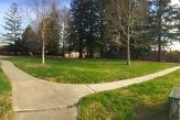 Round Tree Park